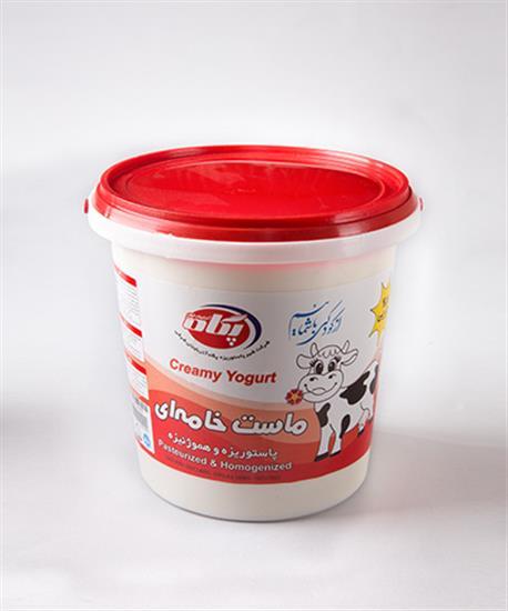 Picture of Pegah yogurt